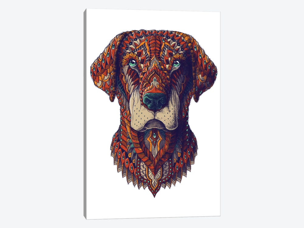 Labrador In Color II 1-piece Canvas Wall Art