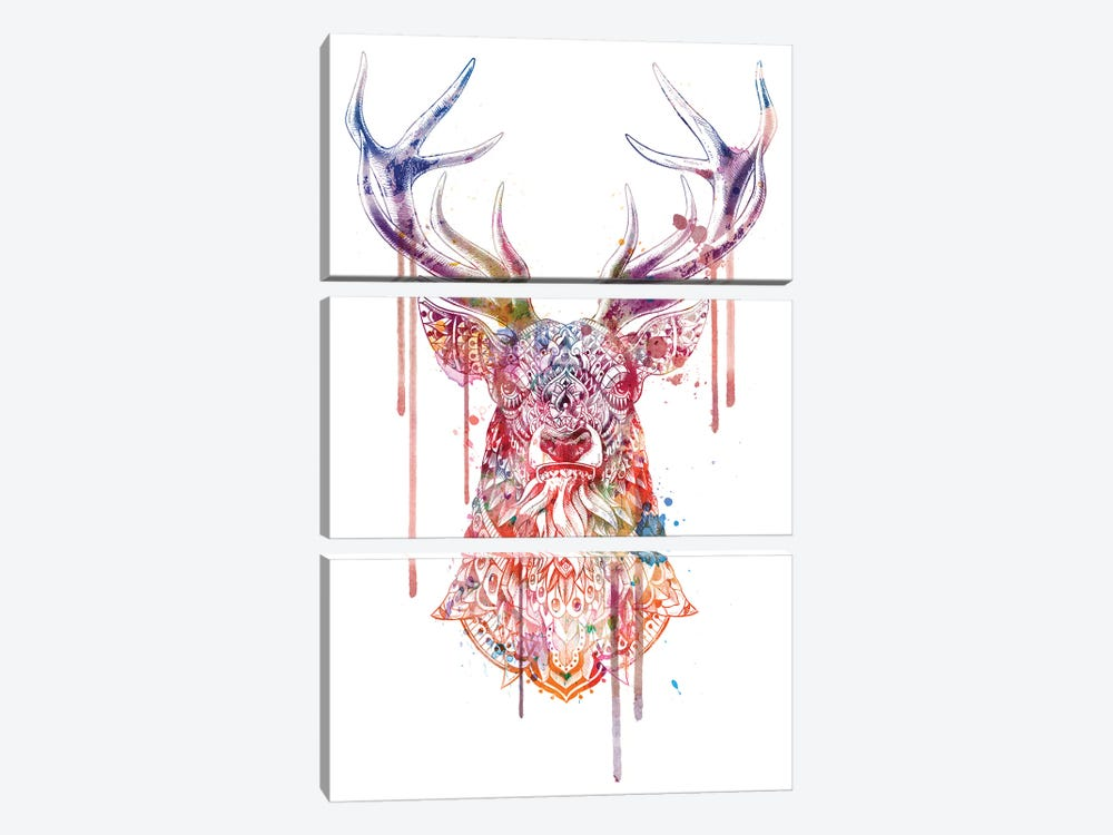 Ornate Buck In Color I by BIOWORKZ 3-piece Canvas Print