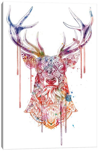 Ornate Buck In Color I Canvas Art Print