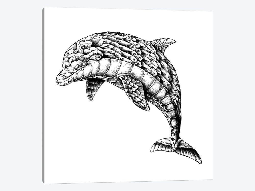 Ornate Dolphin by Bioworkz 1-piece Art Print
