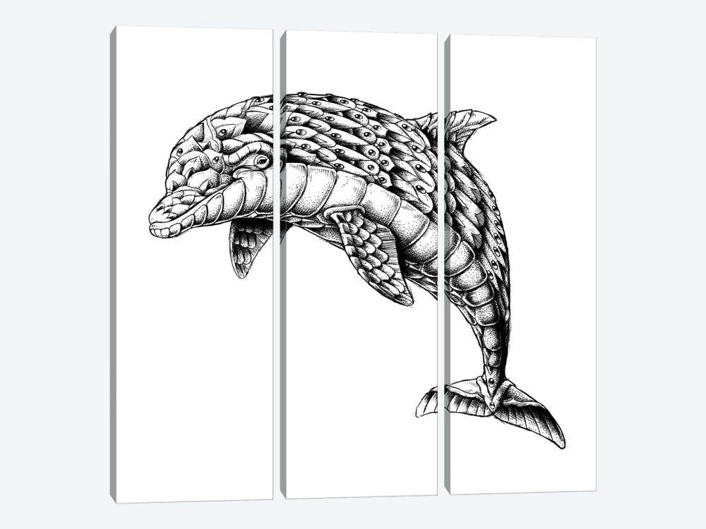 Ornate Dolphin by Bioworkz 3-piece Canvas Print