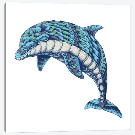 Ornate Dolphin In Color I Canvas Print #BWZ69} by Bioworkz Art Print