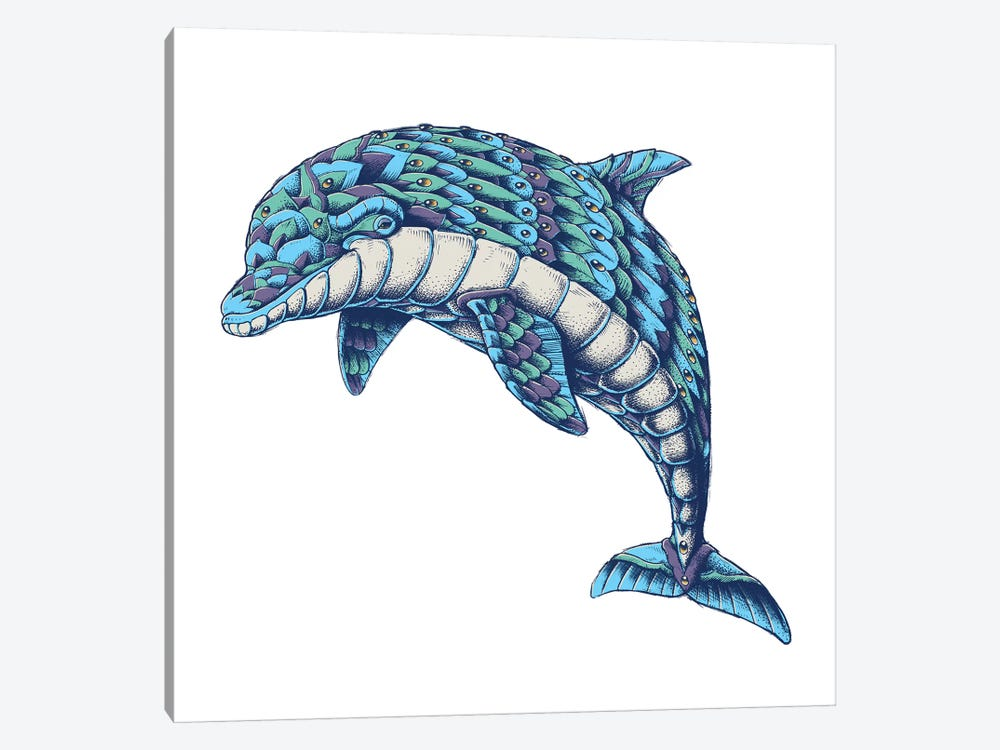 Ornate Dolphin In Color I by Bioworkz 1-piece Canvas Art