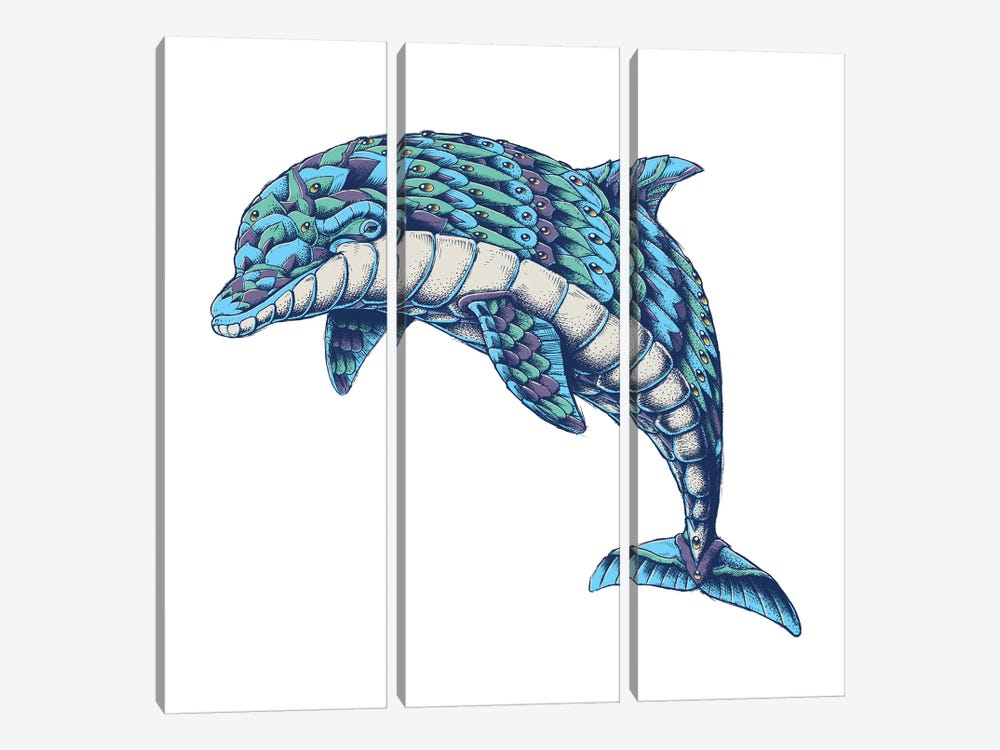 Ornate Dolphin In Color I by Bioworkz 3-piece Canvas Wall Art