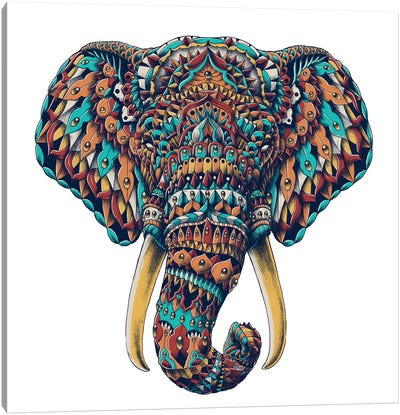 Ornate Elephant Head In Color I Canvas Art Print