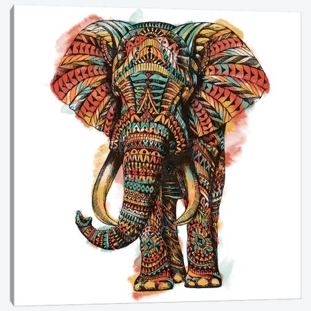 Ornate Elephant I In Color I Canvas Print #BWZ72} by Bioworkz Canvas Wall Art