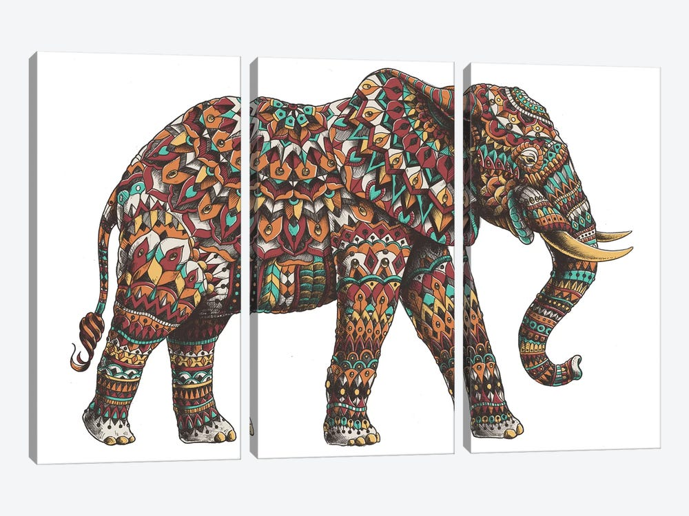 Ornate Elephant II In Color I by Bioworkz 3-piece Canvas Wall Art