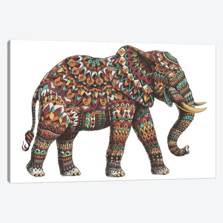 Ornate Elephant II In Color I Canvas Print #BWZ74} by Bioworkz Art Print