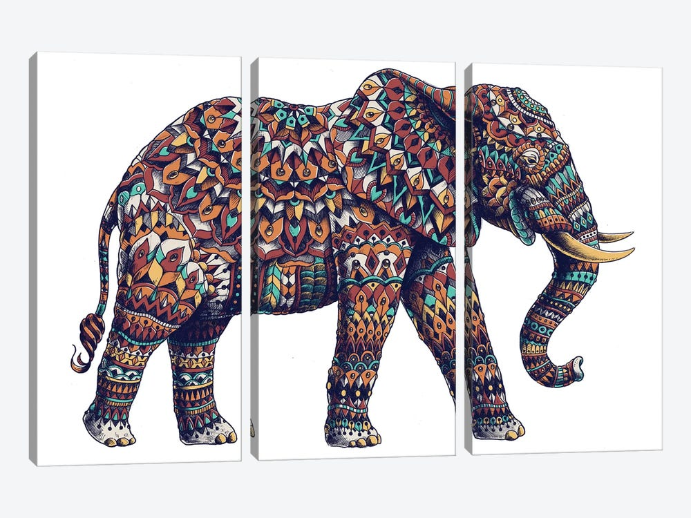 Ornate Elephant II In Color II by Bioworkz 3-piece Canvas Print