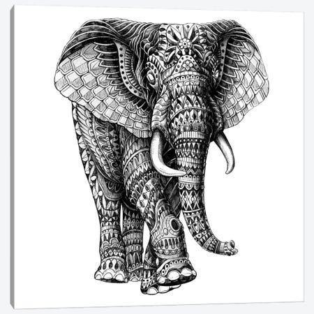 Ornate Elephant III Canvas Print #BWZ76} by Bioworkz Canvas Print