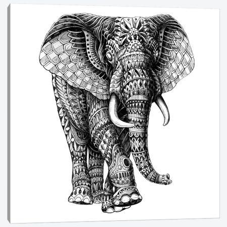 Ornate Elephant III Canvas Print #BWZ76} by Bioworkz Canvas Print