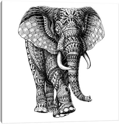 Ornate Elephant III Canvas Art Print