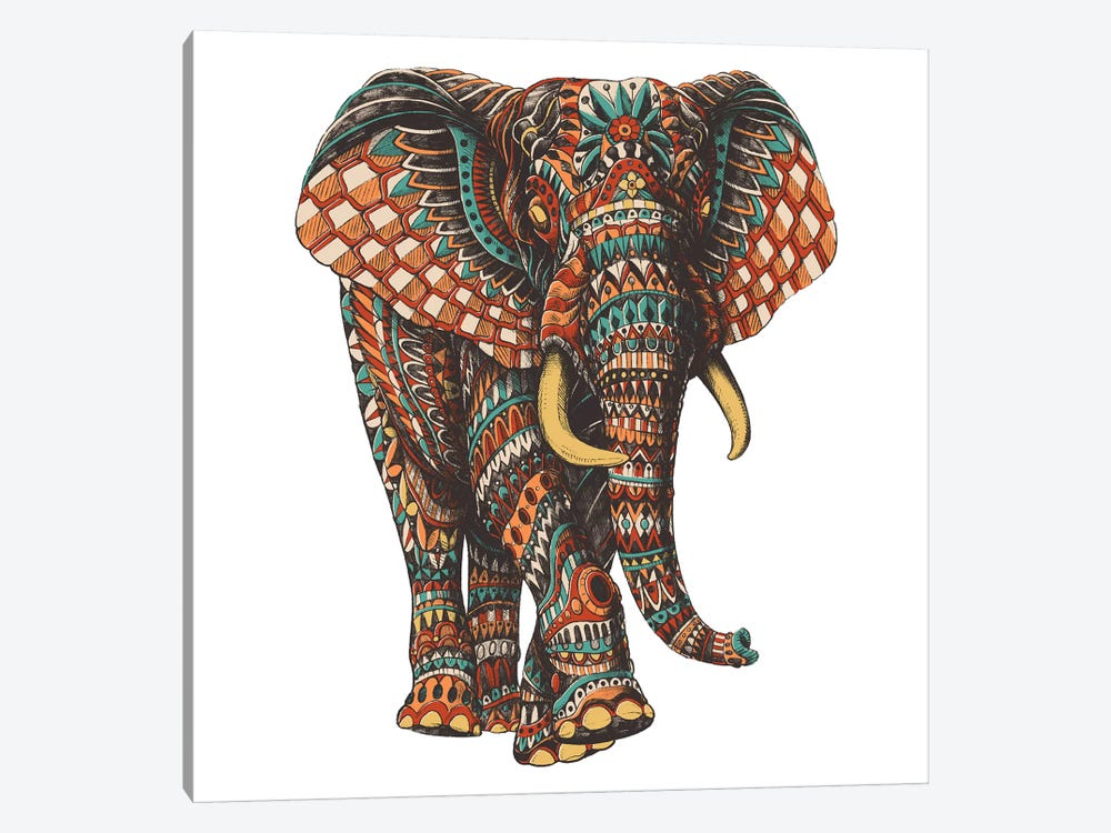 Ornate Elephant III In Color I by BIOWORKZ 1-piece Canvas Art Print