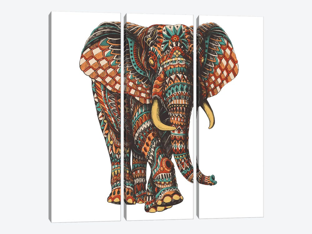 Ornate Elephant III In Color I 3-piece Art Print