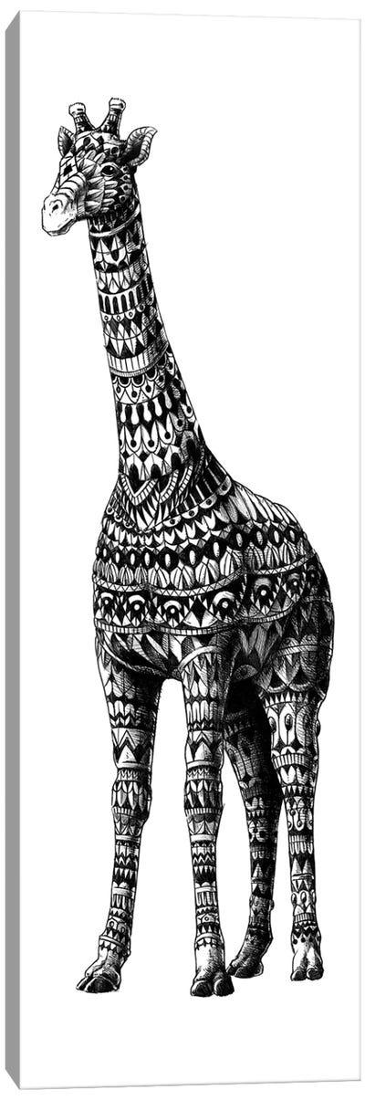 Ornate Giraffe Canvas Art Print