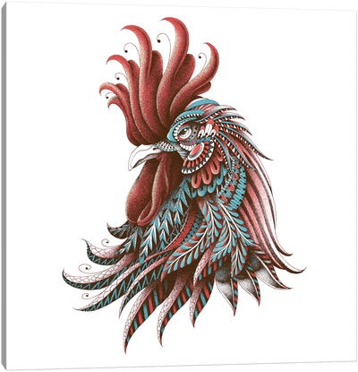 Ornate Rooster In Color II Canvas Art Print