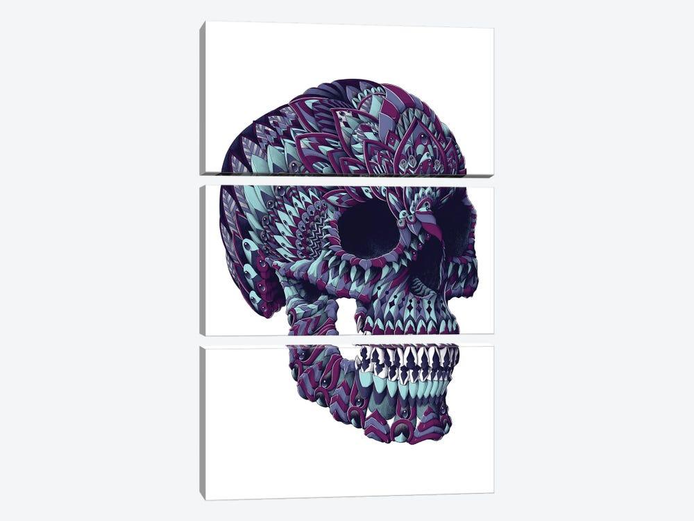 Ornate Skull In Color III by Bioworkz 3-piece Canvas Art