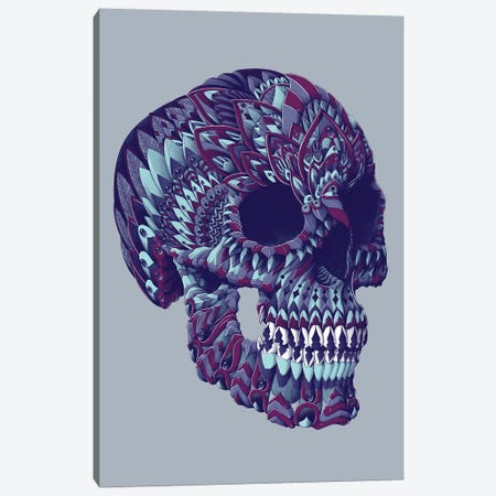 Ornate Skull In Color IV Canvas Print #BWZ93} by Bioworkz Canvas Art