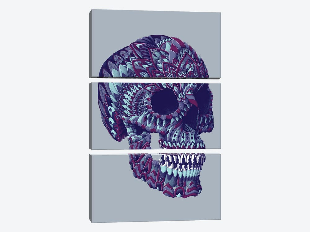 Ornate Skull In Color IV by Bioworkz 3-piece Canvas Art Print