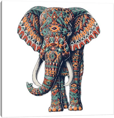 Ornate Tribal Elephant In Color I Canvas Art Print