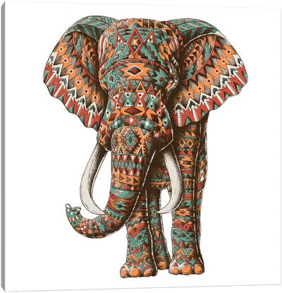 Ornate Tribal Elephant In Color II Canvas Art Print