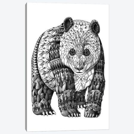 Panda Canvas Print #BWZ97} by Bioworkz Canvas Print