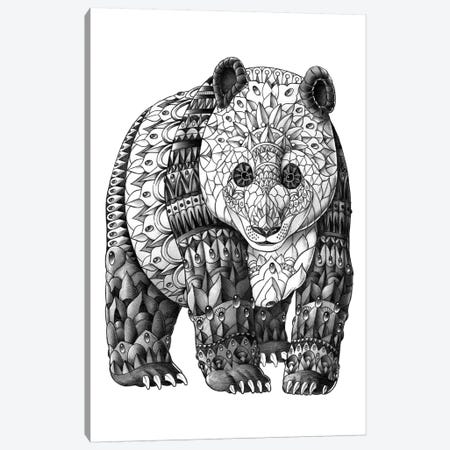 Panda Canvas Print #BWZ97} by Bioworkz Canvas Print