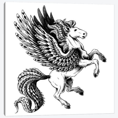 Pegasus Canvas Print #BWZ98} by Bioworkz Canvas Artwork