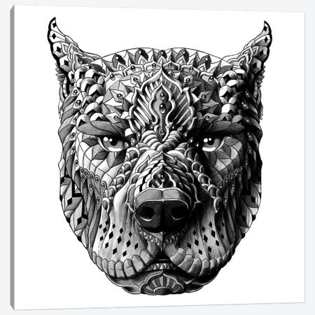 Pitbull Canvas Print #BWZ99} by Bioworkz Canvas Wall Art