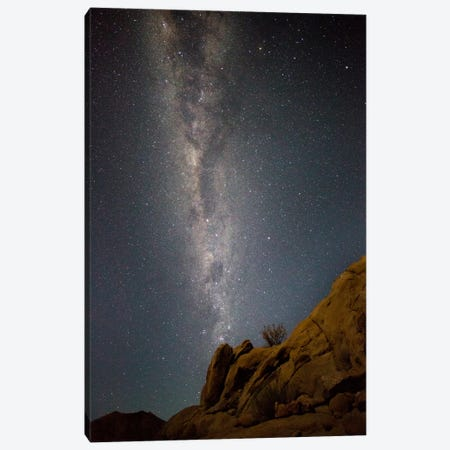 Milky Way Galaxy As Seen From Richtersveld, North Cape, South Africa Canvas Print #BYO1} by Bill Young Canvas Art