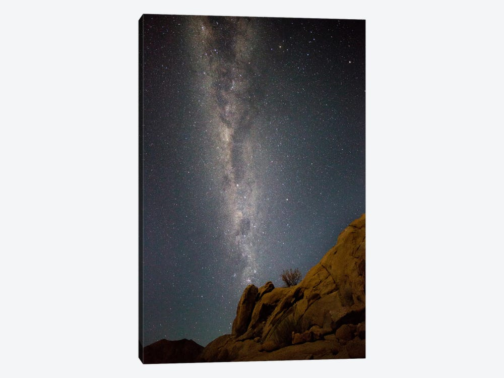 Milky Way Galaxy As Seen From Richtersveld, North Cape, South Africa by Bill Young 1-piece Canvas Wall Art