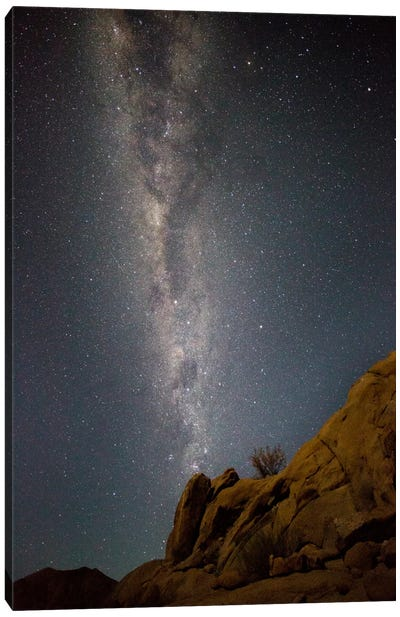 Milky Way Galaxy As Seen From Richtersveld, North Cape, South Africa Canvas Art Print