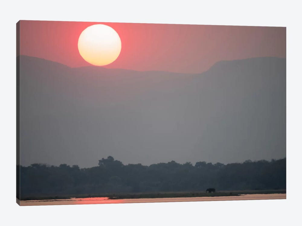 Magnificent Sunset, Zambezi River by Bill Young 1-piece Canvas Print