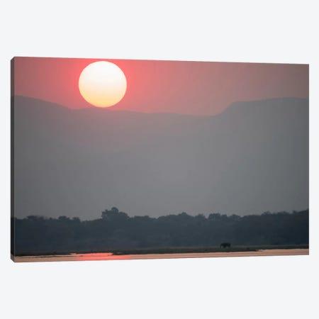 Magnificent Sunset, Zambezi River 3-Piece Canvas #BYO2} by Bill Young Canvas Artwork