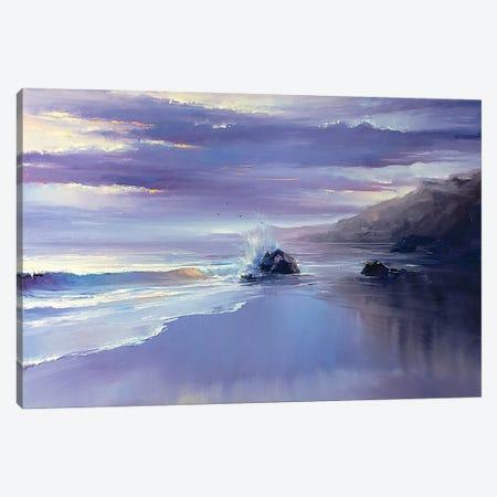 After A Storm Canvas Print #BZH18} by Bozhena Fuchs Canvas Art Print