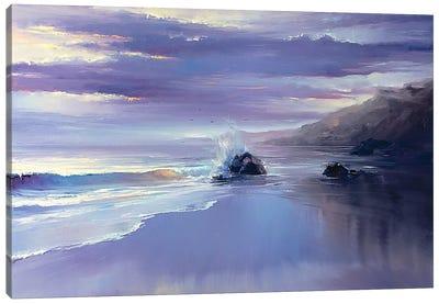 After A Storm Canvas Art Print