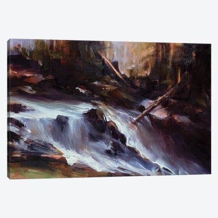 Mountain Runoff Canvas Print #BZH65} by Bozhena Fuchs Canvas Art Print