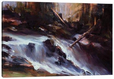 Mountain Runoff Canvas Art Print