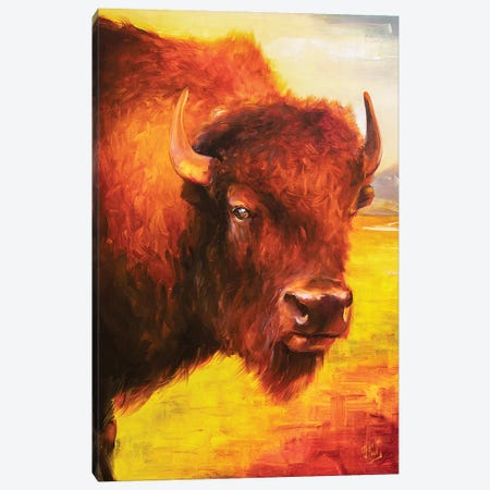 Bison Canvas Print #BZH6} by Bozhena Fuchs Canvas Art Print