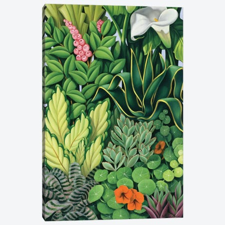 Foliage I Canvas Print #CAB12} by Catherine Abel Art Print