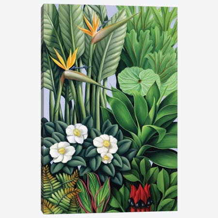 Foliage II 3-Piece Canvas #CAB13} by Catherine Abel Canvas Print