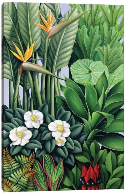 Foliage II Canvas Art Print