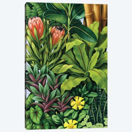 Foliage III Canvas Print #CAB14} by Catherine Abel Canvas Artwork