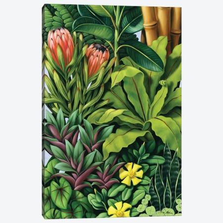 Foliage III Canvas Print #CAB14} by Catherine Abel Canvas Artwork