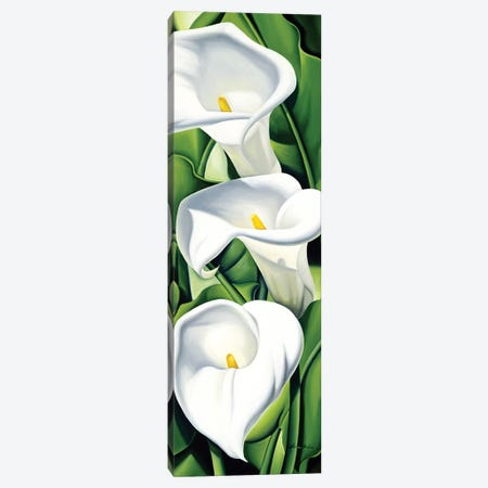 Lilies  Canvas Print #CAB40} by Catherine Abel Canvas Wall Art