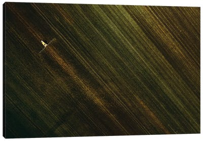 Lines Between The Fields Canvas Art Print