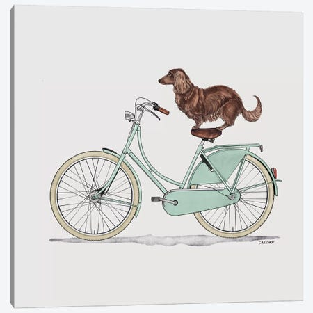 Dachshund On Bicycle Canvas Print #CAE11} by Carolynn Elshof Canvas Wall Art