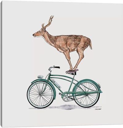 Deer On Bicycle Canvas Art Print