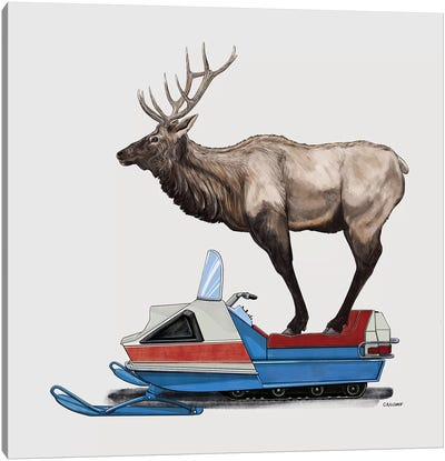Elk On Skidoo Canvas Art Print