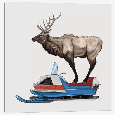 Elk On Skidoo Canvas Print #CAE15} by Carolynn Elshof Art Print